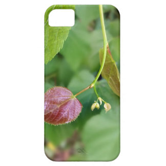 new leaf spring case for the iPhone 5