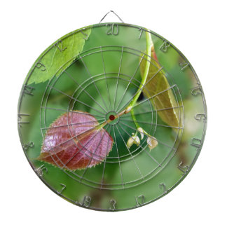 new leaf spring dartboard