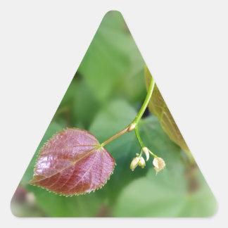 new leaf spring triangle sticker