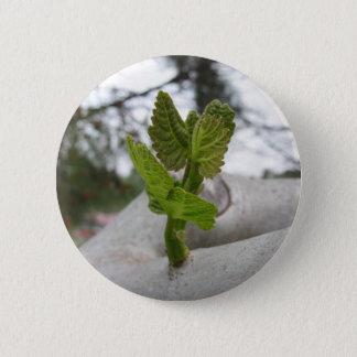 New life idea concept 2 inch round button