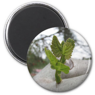 New life idea concept 2 inch round magnet