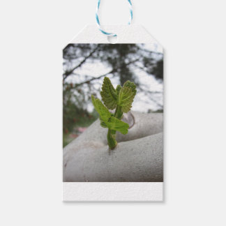 New life idea concept gift tags