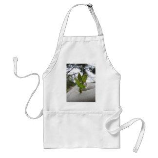 New life idea concept standard apron