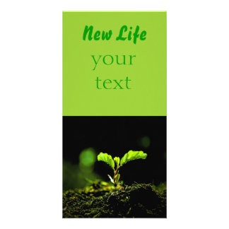 New life photo card