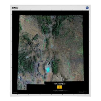 New Mexico From Space Poster
