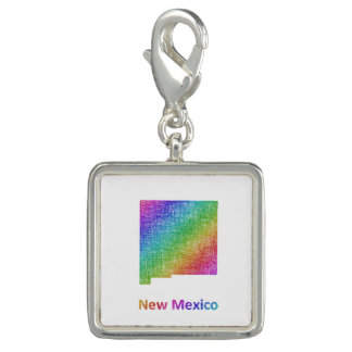 New Mexico Photo Charm