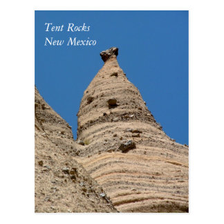 New Mexico ROCKS Postcard