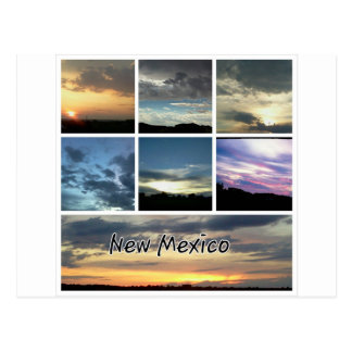 New Mexico Skies Postcard