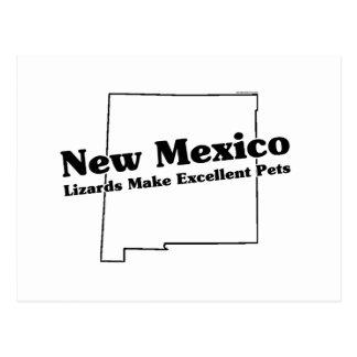 New Mexico State Slogan Postcard