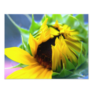New Mexico Sunflower Card