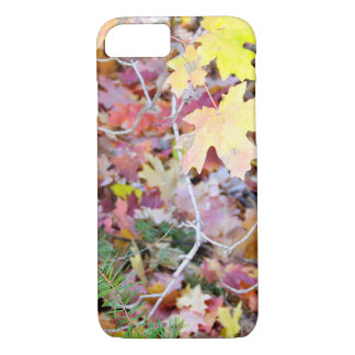 New Mexico Wild Maples iPhone Case