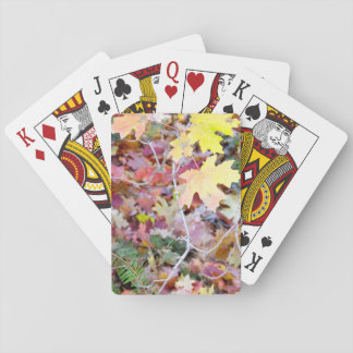 New Mexico Wild Maples Playing Cards