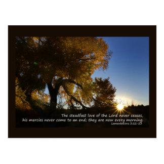New Mornings Postcard