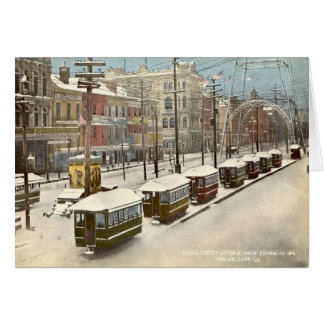 New Orleans Canal St Snow 1885 Card