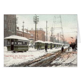 New Orleans Canal St Snow 1895 Card