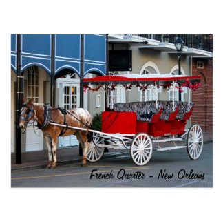 New Orleans Carriage Ride Postcard