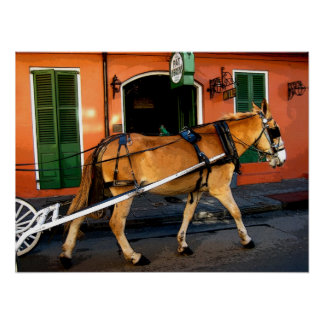 New Orleans French Quarter Carriage Mule Print