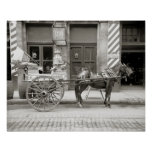 New Orleans Milk Cart, 1910. Vintage Photo Poster