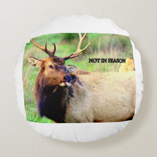 New Products Round Pillow