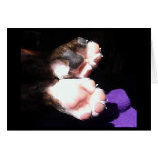 New puppy paws greeting card