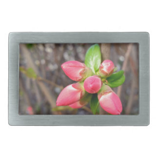 new red buds belt buckles
