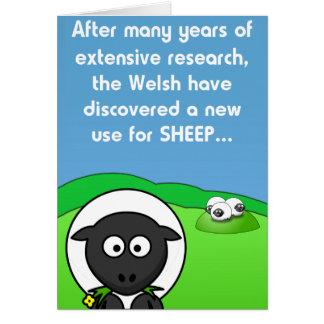 New Use 4 sheep Card