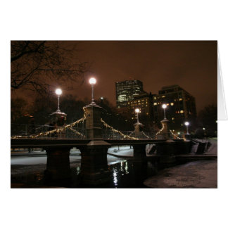 New Year's Night in the Public Garden Card