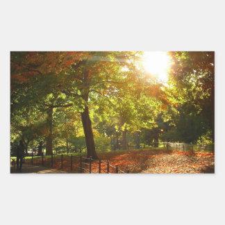New York City Autumn Sun Rectangular Sticker