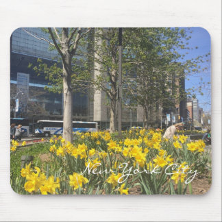 New York City Daffodils Columbus Circle NYC Spring Mouse Pad