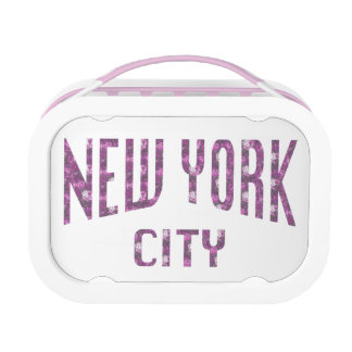 New York City on Spring Pink Rose Lunch Box