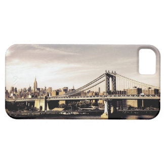 New York City Skyline in the Sunlight Case For The iPhone 5