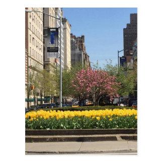 New York City Springtime on Park Avenue Postcard