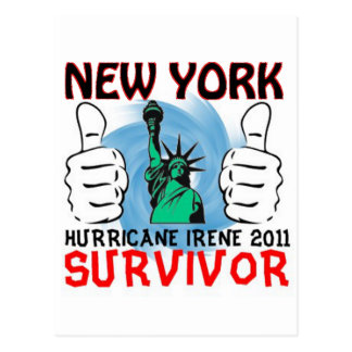New York Hurricane Irene Survivor Postcard