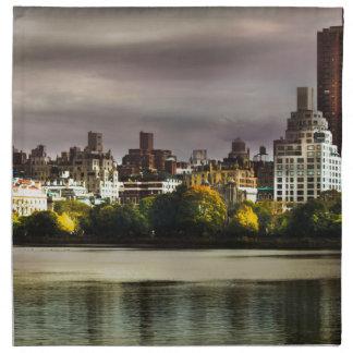 New York Napkin