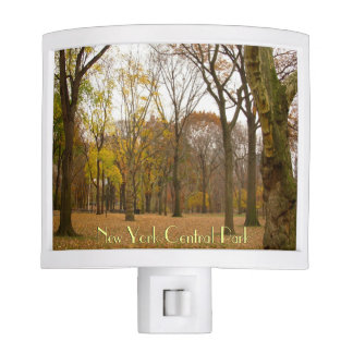 New York Nightlight Custom Central Park Souvenir Night Lite