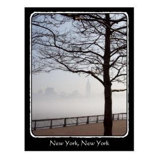 New York Skyline Silhouette Tree Branches border Postcard