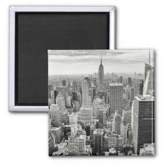 New York Skyscapers Magnet