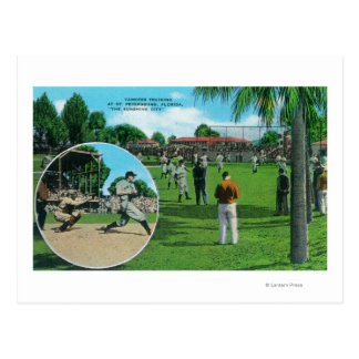 New York Yankees in Training Scene Postcard