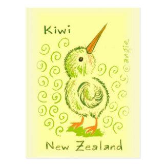 New Zealand Kiwi Bird Postcard