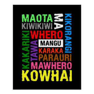 NEW ZEALAND KIWI MAORI COLOURS SUBWAY ART POSTER