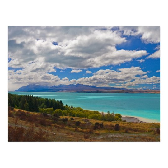 New Zealand: Lake Pukaki Postcard