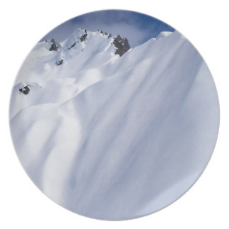 New Zealand Mountains, Aerial View.JPG Party Plates