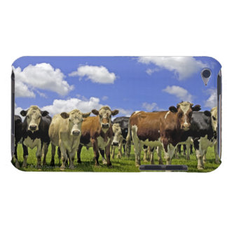 New Zealand, North Island, Auckland iPod Touch Cover