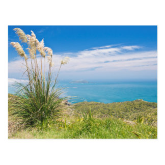 New Zealand, North Island, Cape Reinga Postcard