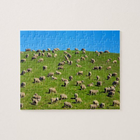 New Zealand, South Island, Canterbury Jigsaw Puzzle