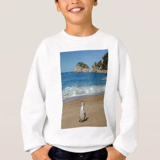 New Zealand South Island Sweatshirt