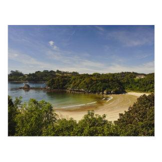 New Zealand, Southland, Stewart Island, Halfmoon Postcard