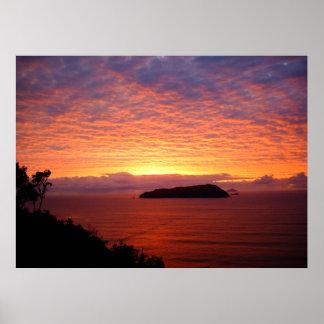 New Zealand - Sunrise Posters