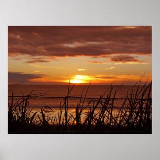 New Zealand Sunset Poster