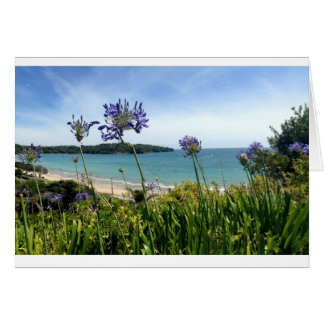 New Zealand Waiheke Island blank greeting card